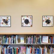 Students from University Hill Elementary School bee designs hang on wall.