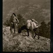 Man and a burro loaded with bags on the mountain side. Details unknown.
