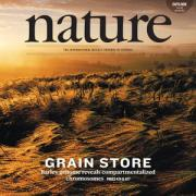 Current cover of Nature
