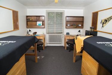 Roommate(s) style room