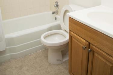 Crosman triple bathroom
