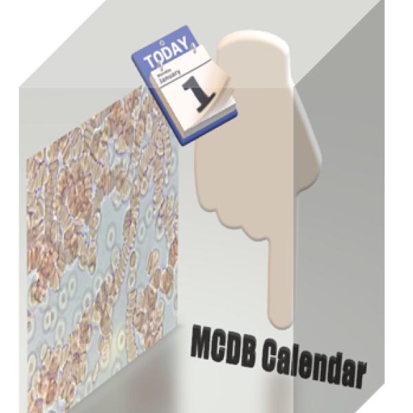 MCDB Calendar Cartoon and RBC