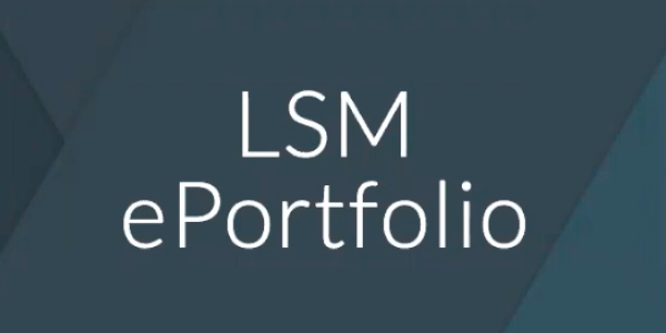 Google Sites ePortfolio tutorial for LSM