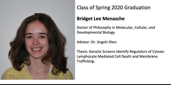 Bridget Lee Menasche