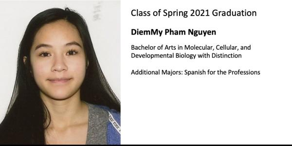 DiemMy Pham Nguyen