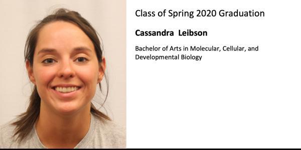 Cassandra  Leibson