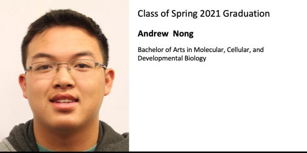 Andrew  Nong