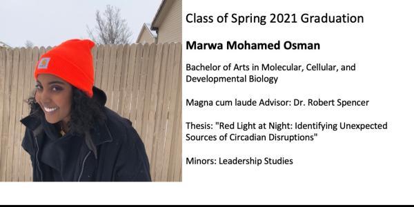 Marwa Mohamed Osman