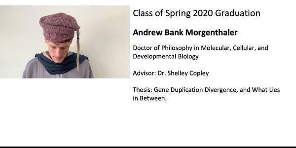 Andrew Bank Morgenthaler