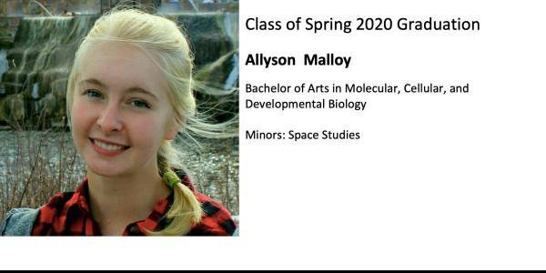 Allyson  Malloy
