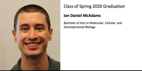 Ian Daniel McAdams