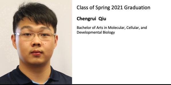Chengrui  Qiu