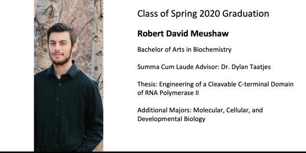 Robert David Meushaw