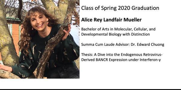 Alice Rey Landfair Mueller