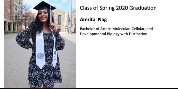 Amrita  Nag