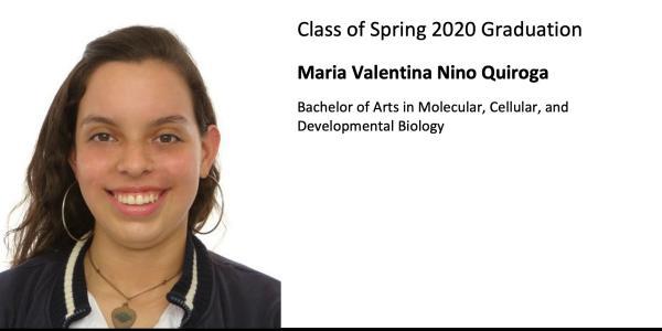 Maria Valentina Nino Quiroga