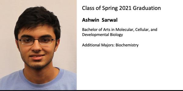 Ashwin  Sarwal