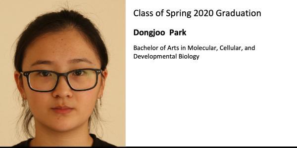 Dongjoo  Park