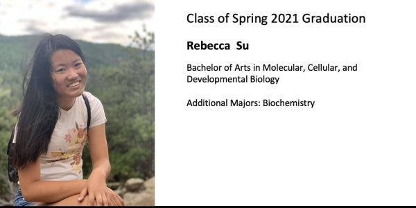 Rebecca  Su