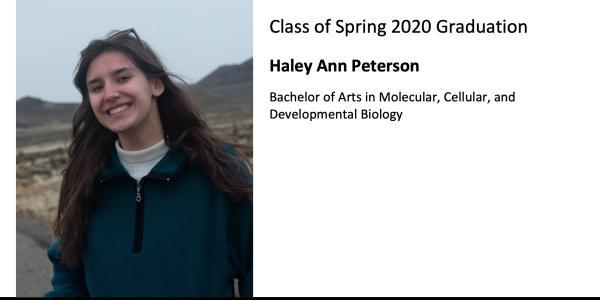 Haley Ann Peterson