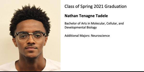 Nathan Tenagne Tadele