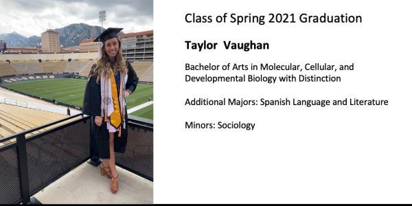 Taylor  Vaughan