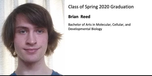 Brian  Reed
