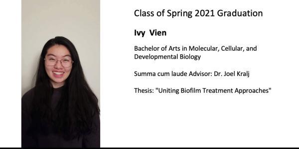 Ivy  Vien
