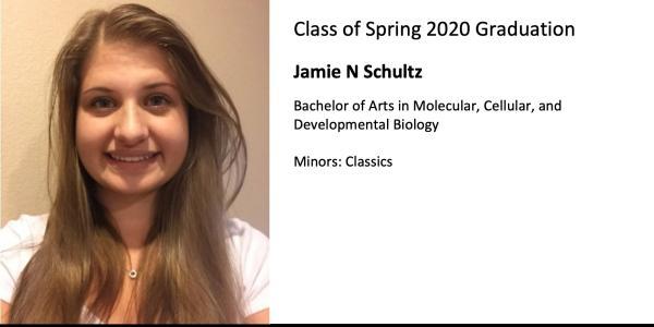 Jamie N Schultz