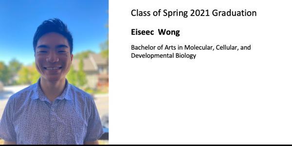 Eiseec  Wong