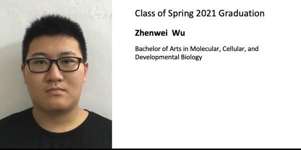 Zhenwei  Wu