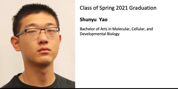 Shunyu  Yao