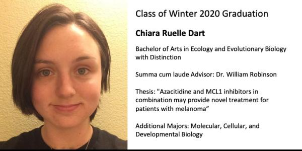 Chiara Ruelle Dart