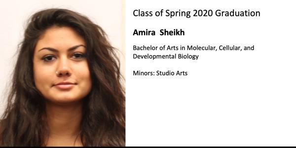 Amira  Sheikh