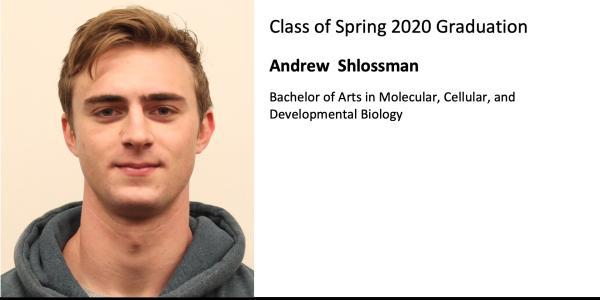 Andrew  Shlossman