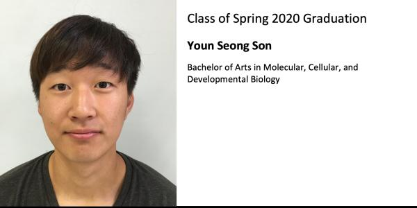 Youn Seong Son