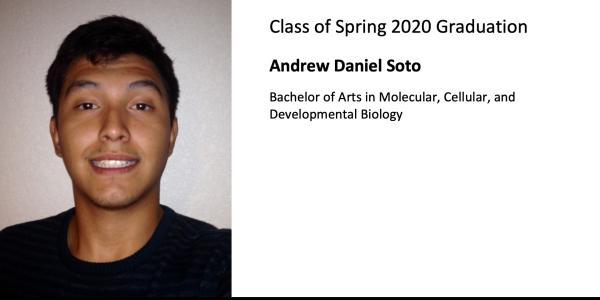 Andrew Daniel Soto