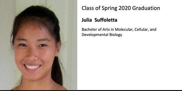 Julia  Suffoletta