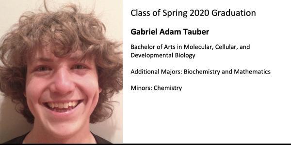 Gabriel Adam Tauber