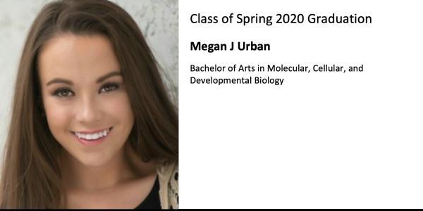 Megan J Urban