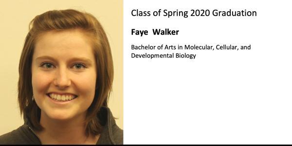 Faye  Walker