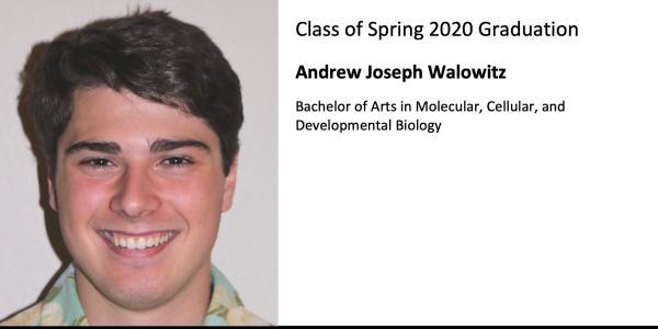 Andrew Joseph Walowitz