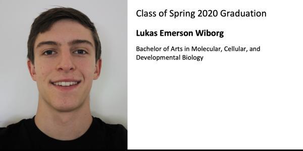 Lukas Emerson Wiborg