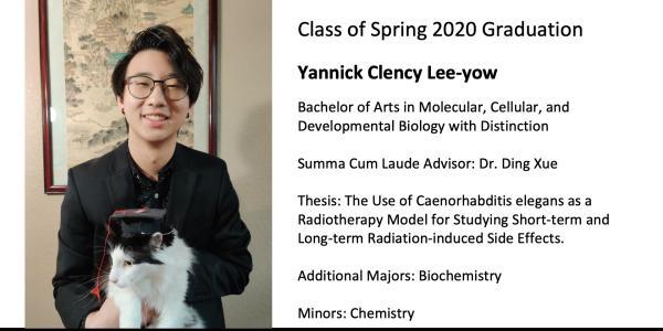 Yannick Clency Lee-yow