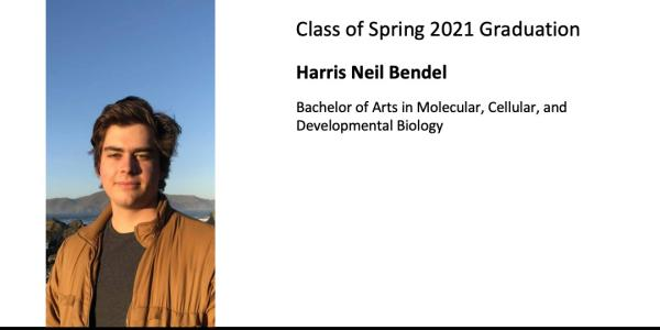 Harris Neil Bendel