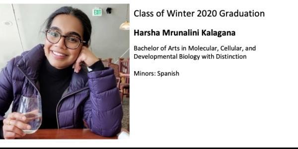 Harsha Mrunalini Kalagana