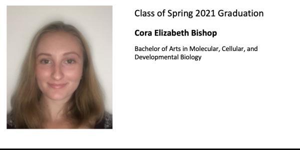 Cora Elizabeth Bishop