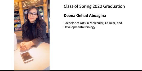 Deena Gehad Abuagina
