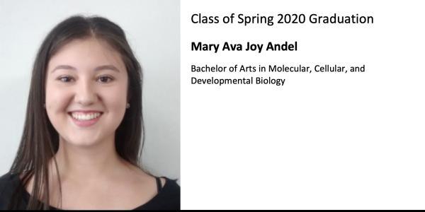 Mary Ava Joy Andel
