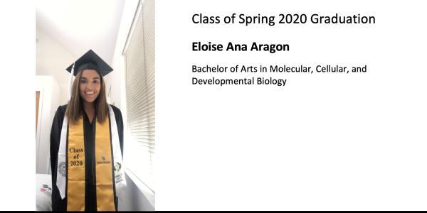 Eloise Ana Aragon